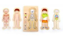 Puzzle Anatomie chlapec